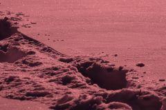 Pink snow. test