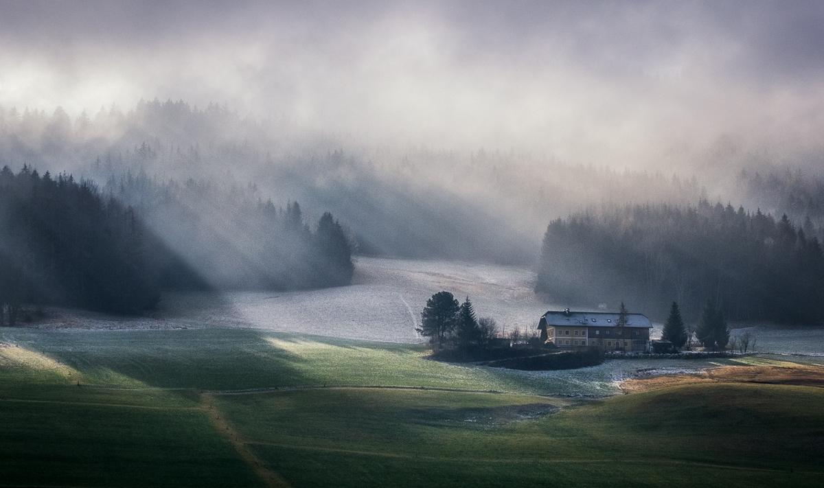 Image by Don Pino